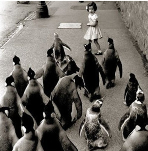 April of the Penguins
